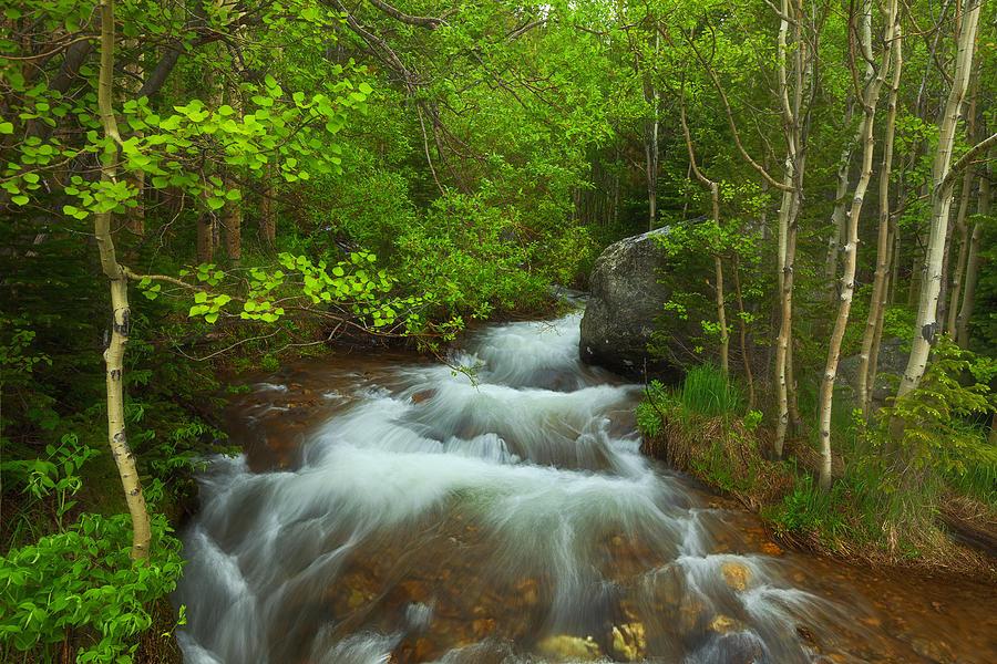 Aspen Creek Photograph By Darren White