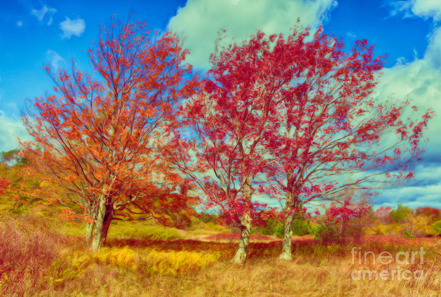 Astonishing Autumn - Fall Colors At Dolly Sods II Painting  - Astonishing Autumn - Fall Colors At Dolly Sods II Fine Art Print