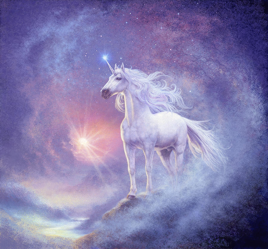 Astral Unicorn Photograph By Steve Read