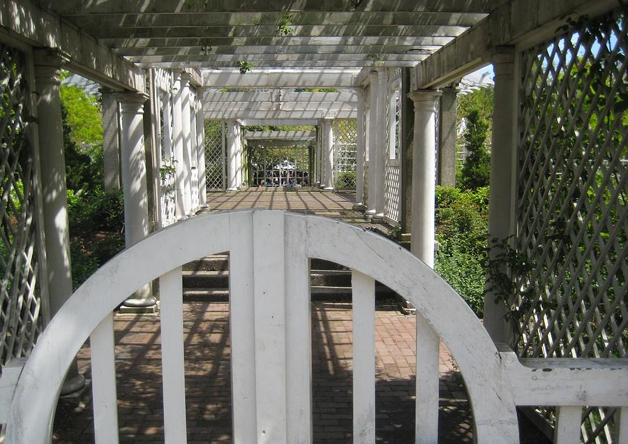 At The Garden Gate Photograph