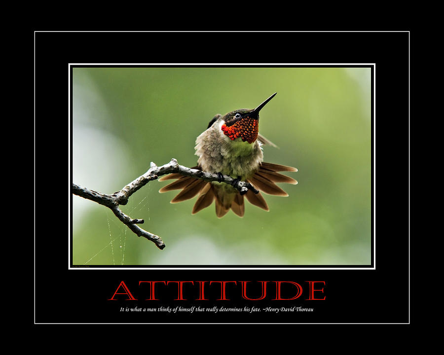 Attitude Inspirational Motivational Poster Art Photograph  - Attitude Inspirational Motivational Poster Art Fine Art Print