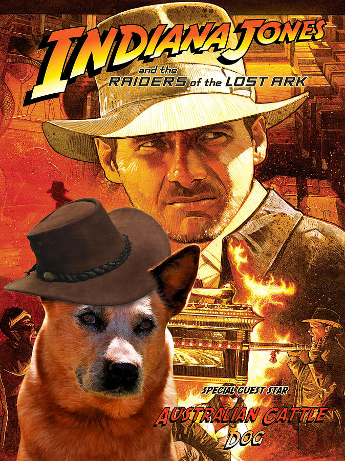 Australian Cattle Dog Art Canvas Print - Indiana Jones Movie Poster Painting