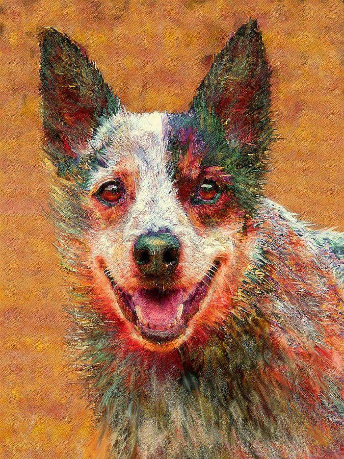 Australian Cattle Dog Digital Art  - Australian Cattle Dog Fine Art Print