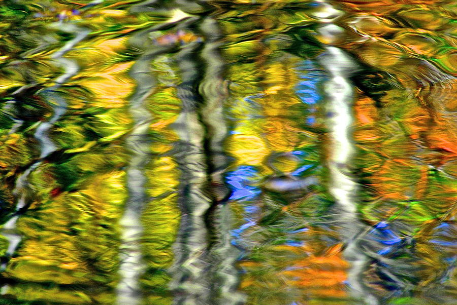 Autumn Abstract Photograph
