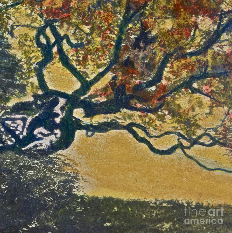 Autumn Bonsai Tree - Lithograph Mixed Media  - Autumn Bonsai Tree - Lithograph Fine Art Print