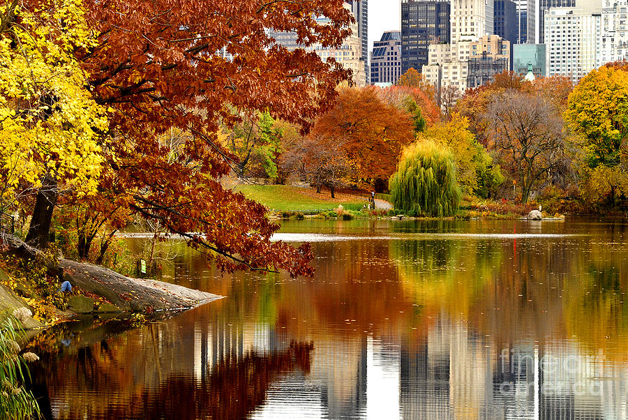 autumn in new york - photo #6