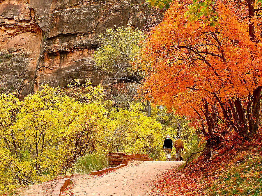 Autumn Colors On Riverside Walk In Zion Canyon Photograph  - Autumn Colors On Riverside Walk In Zion Canyon Fine Art Print