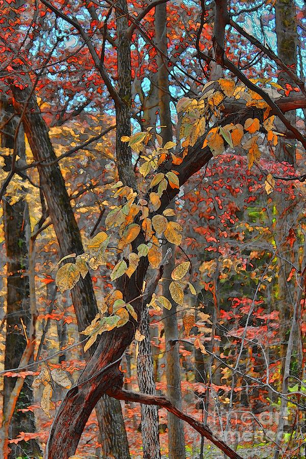 Autumn Day Photograph  - Autumn Day Fine Art Print