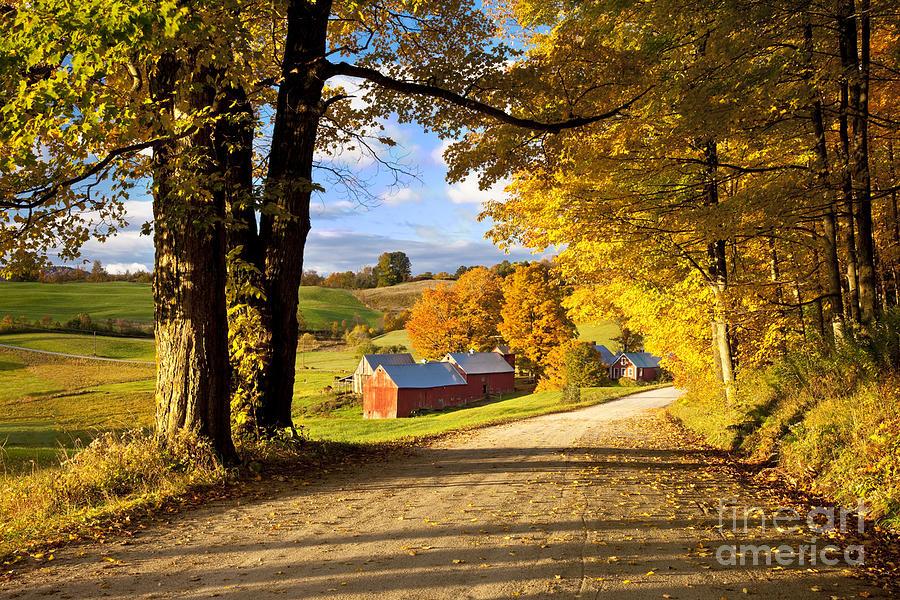 Autumn Farm In Vermont Photograph By Brian Jannsen