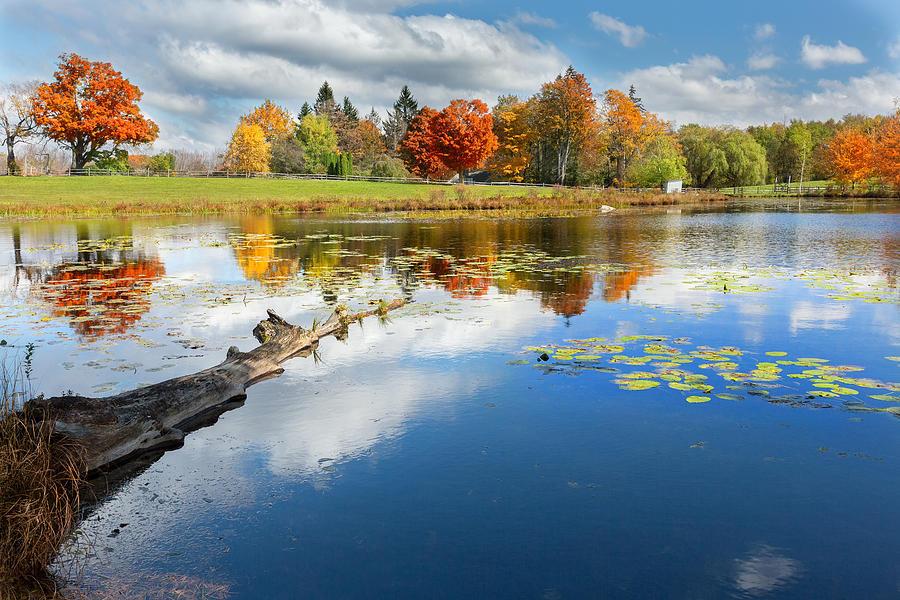 Autumn Farm Pond Photograph