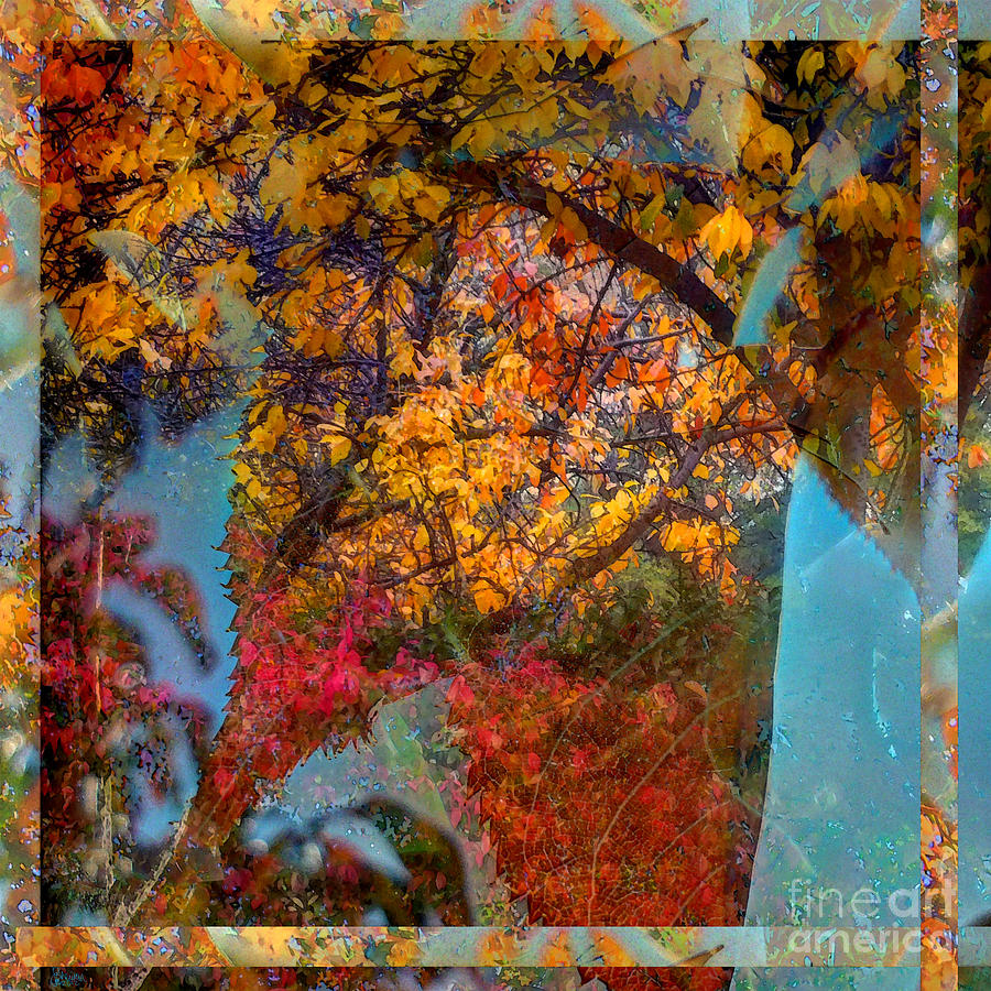 Autumn Fusion 5 Photograph  - Autumn Fusion 5 Fine Art Print