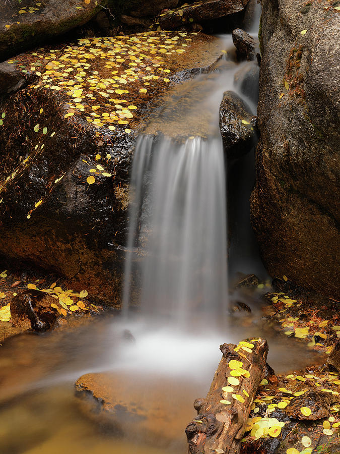 Aspens Photograph - Autumn Gold And Waterfall by Leland D Howard