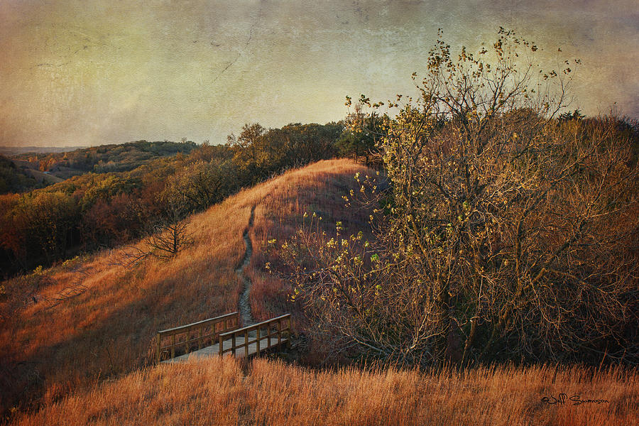 Autumn In The Loess Hills Photograph