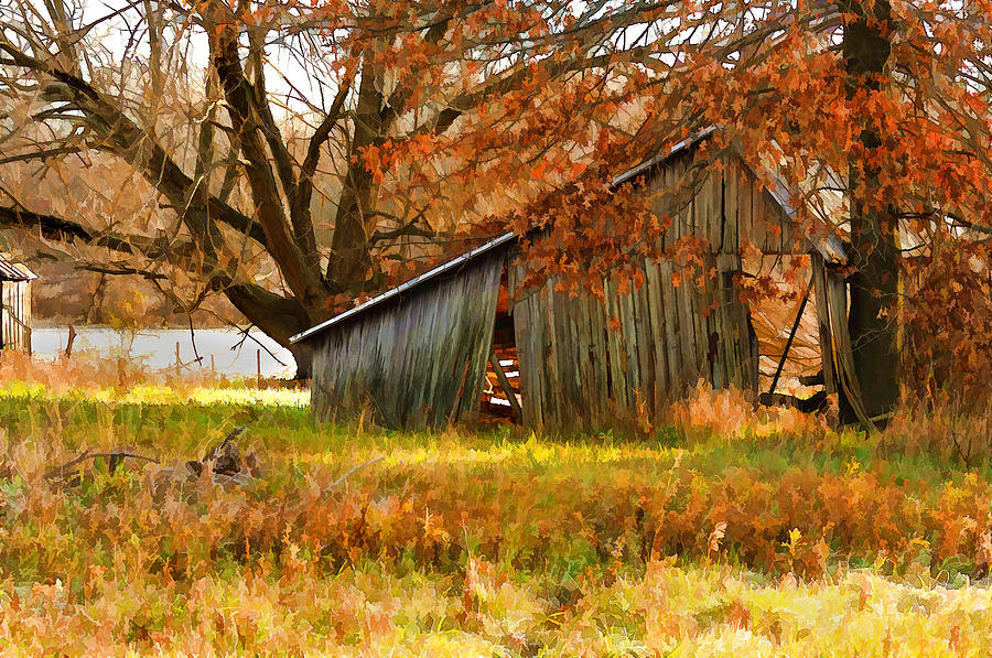 Autumn In The Mid-west Photograph  - Autumn In The Mid-west Fine Art Print