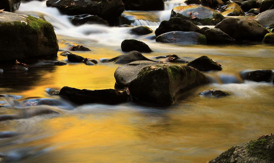 Autumn In The Water Photograph