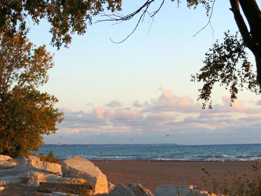 Autumn Lakeside Photograph