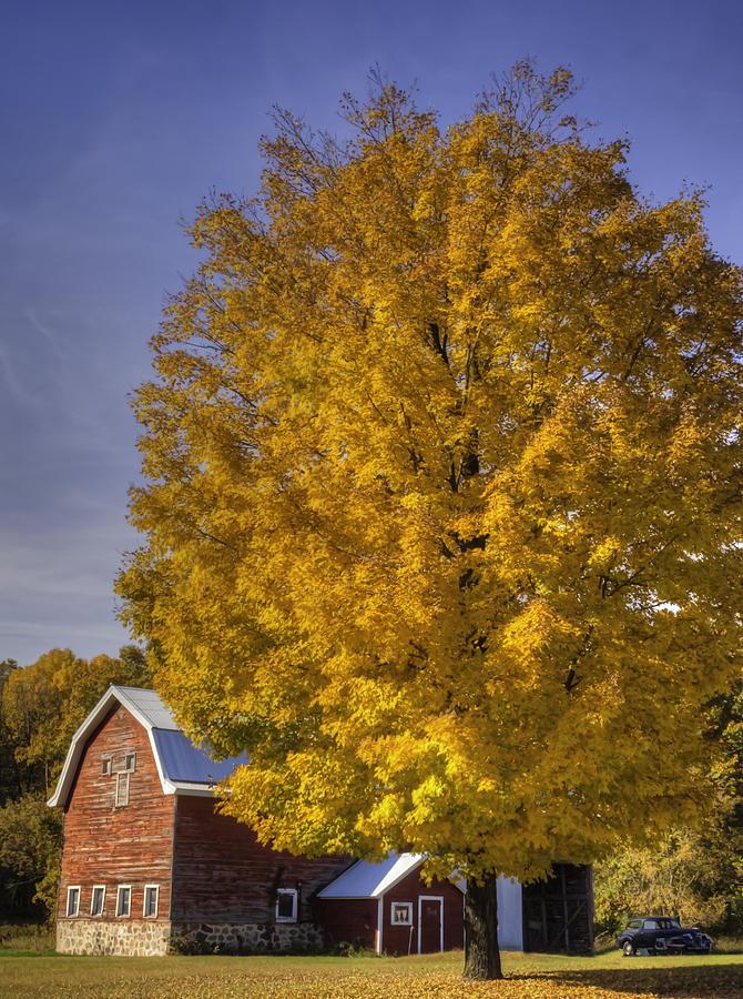 Autumn On The Farm Photograph