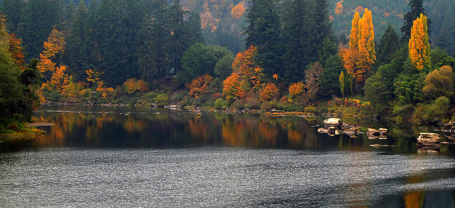 Autumn Photograph - Autumn On The Umpqua by Suzy Piatt
