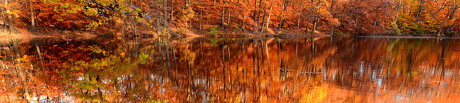 Autumn Paradise Photograph  - Autumn Paradise Fine Art Print