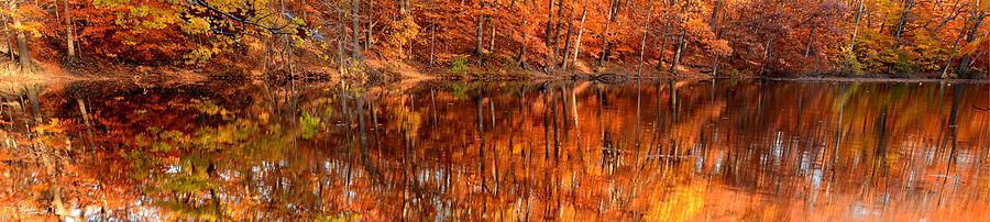 Rhode Island Photograph - Autumn Paradise by Lourry Legarde