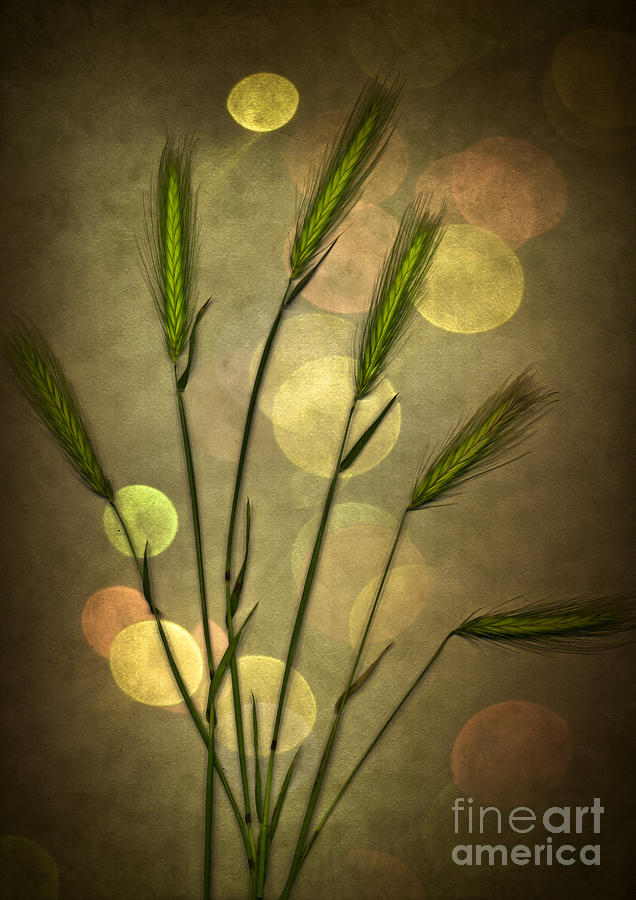 Autumn Party Digital Art  - Autumn Party Fine Art Print