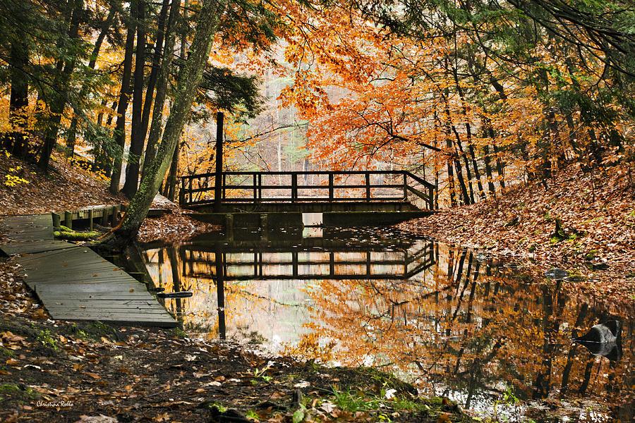 Autumn Pleasure Photograph