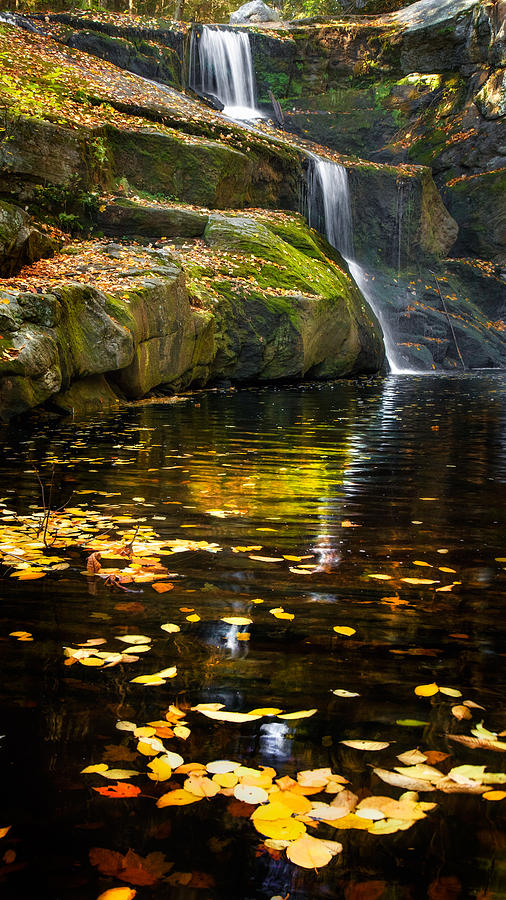 Autumn Pool Photograph  - Autumn Pool Fine Art Print