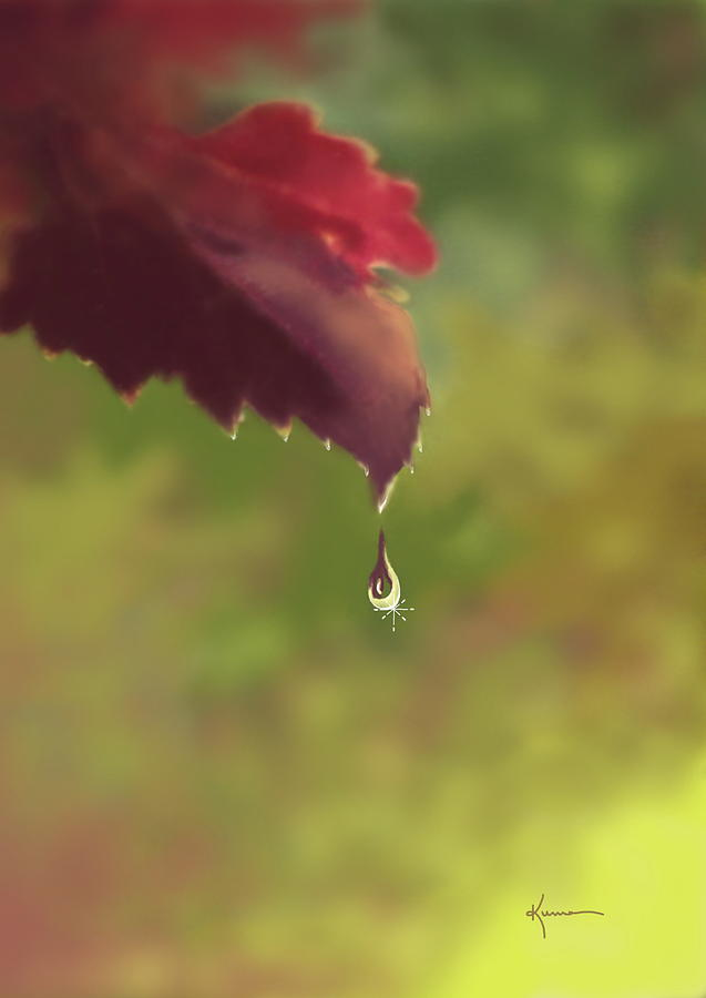 Autumn Photograph - Autumn Rain by Kume Bryant