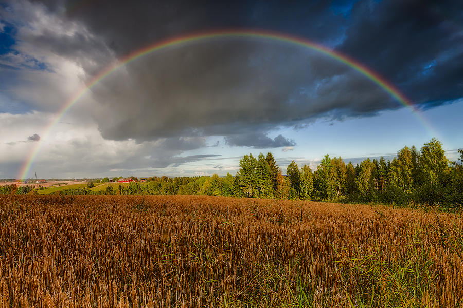 Autumn Rainbow Photograph