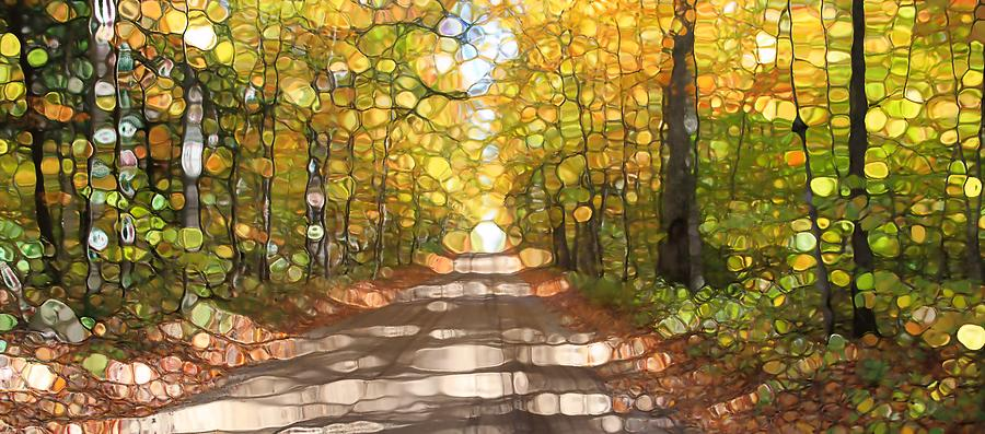 Autumn Road Mosaic Photograph by Dan Sproul