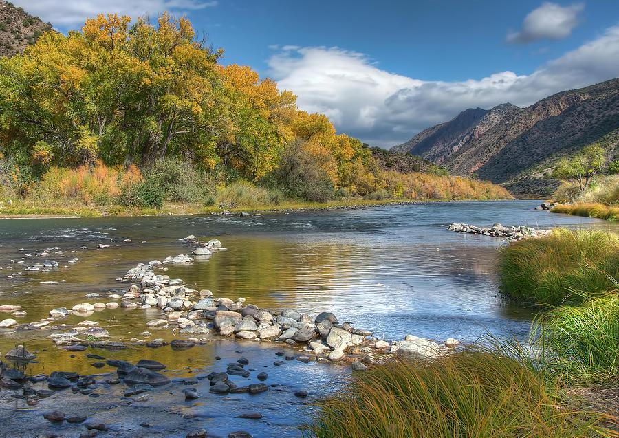 Rio Grande River Photograph - Autumn Stance by Britt Runyon