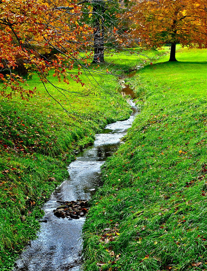 Autumn Stream Photograph  - Autumn Stream Fine Art Print