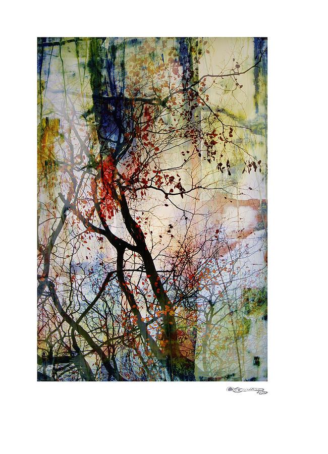 Autumn Tree Composition  Digital Art