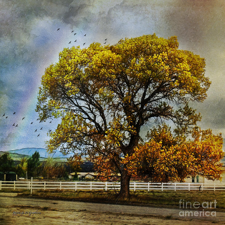 Autumn Tree In Anza Digital Art