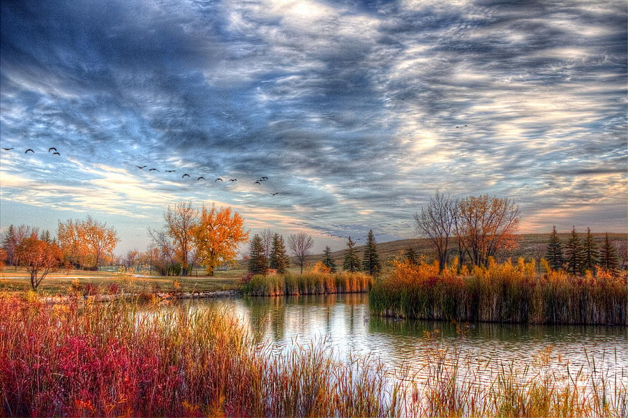 Autumn Photograph - Autumnal Morn by Larry Trupp