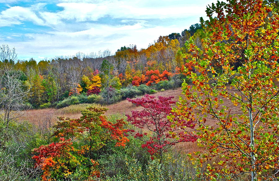 Autumnal Vista Photograph  - Autumnal Vista Fine Art Print