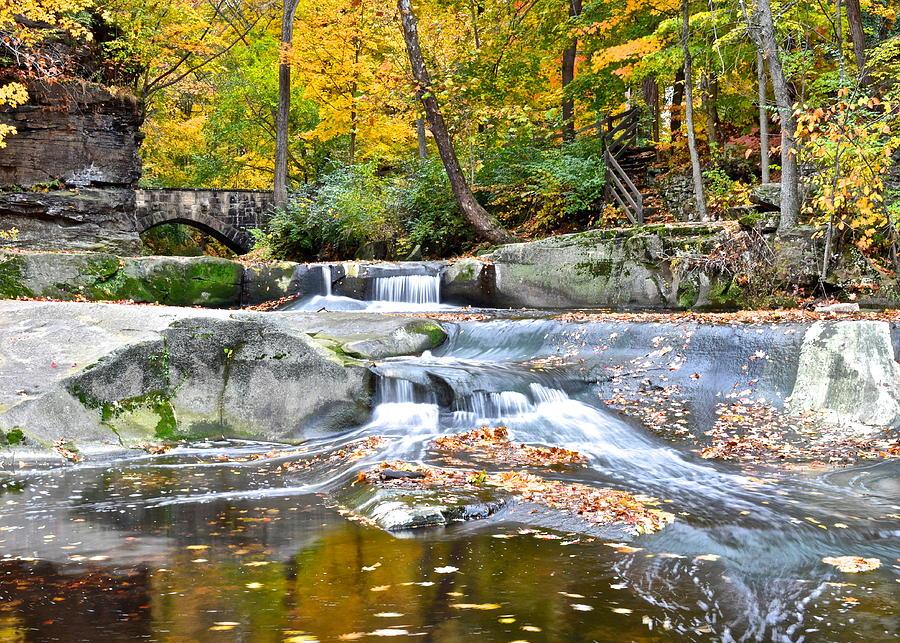 Autumnal Wonderland Photograph