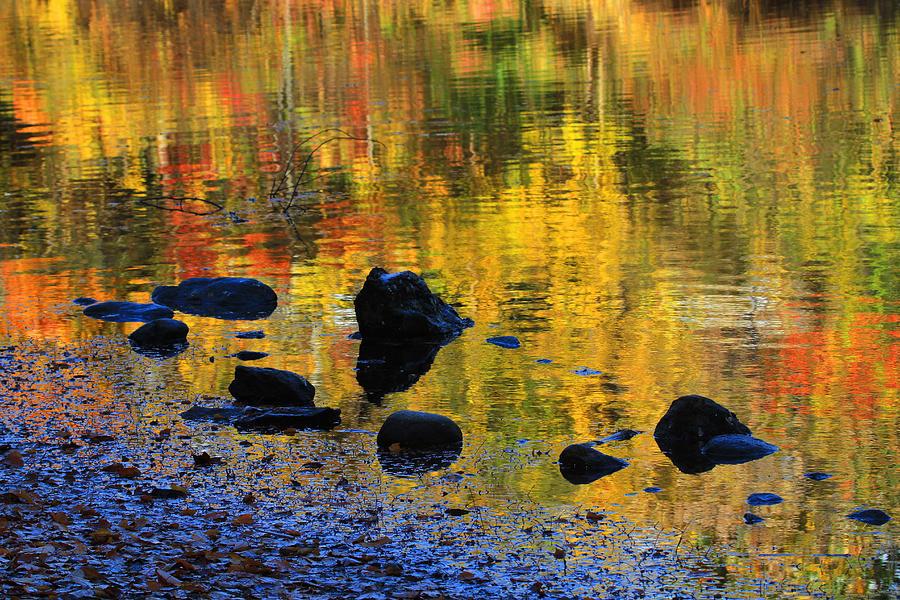 Autumn Photograph - Autumns Rainbow by Karol Livote