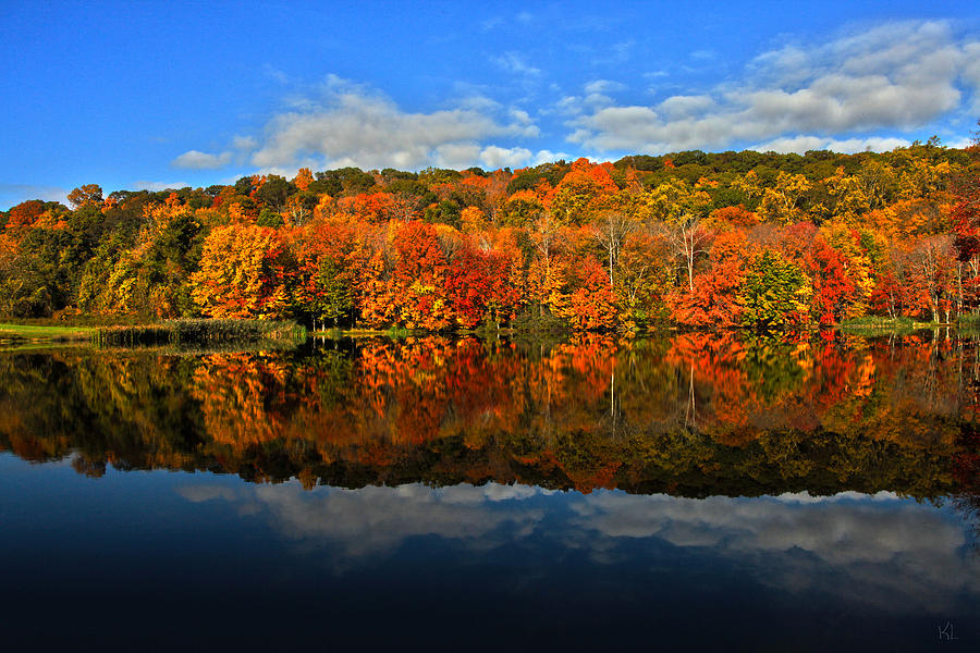 Autumnscape Photograph