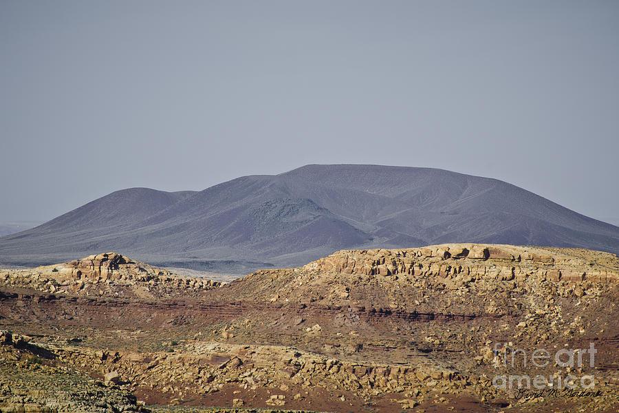 Little Photograph - Az Landscape - Near Grand Canyon by David Gordon