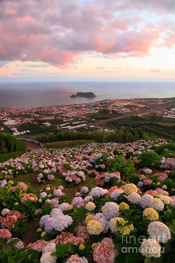 Azorean Town At Sunset Photograph