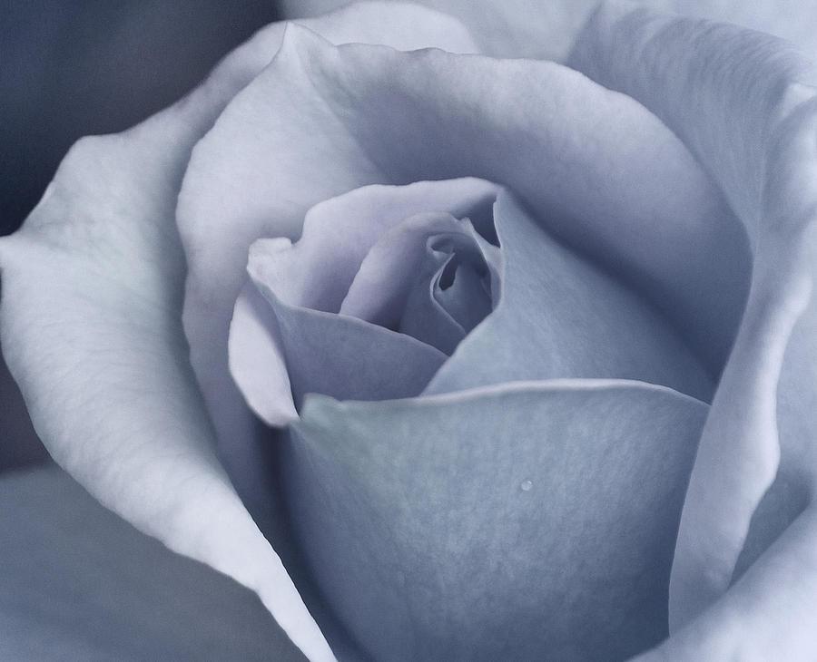 Azul Photograph