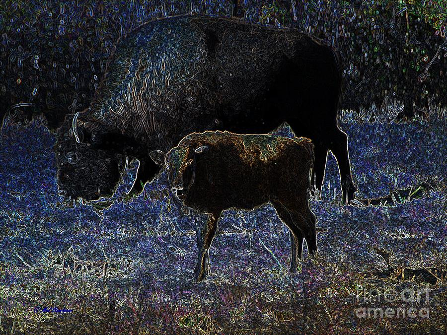 Baby Bison Blues Mixed Media