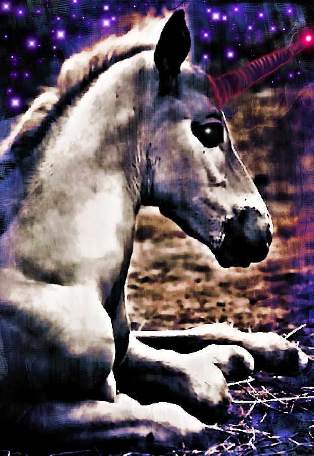 Baby Unicorn Photograph  - Baby Unicorn Fine Art Print