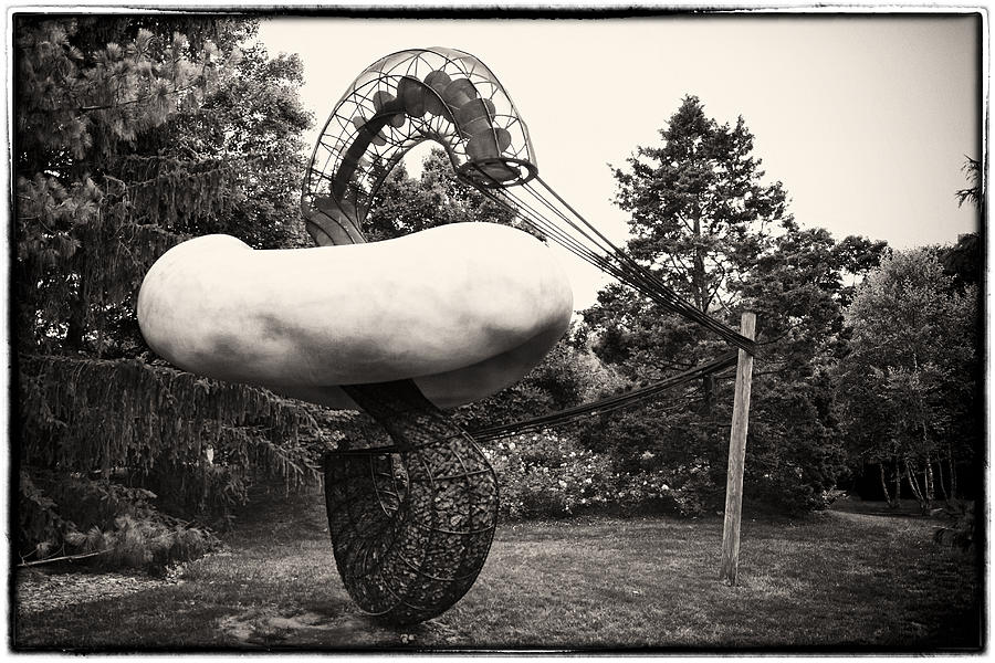Park Photograph - Back In Time At Grounds Of Sculpture by Eduard Moldoveanu