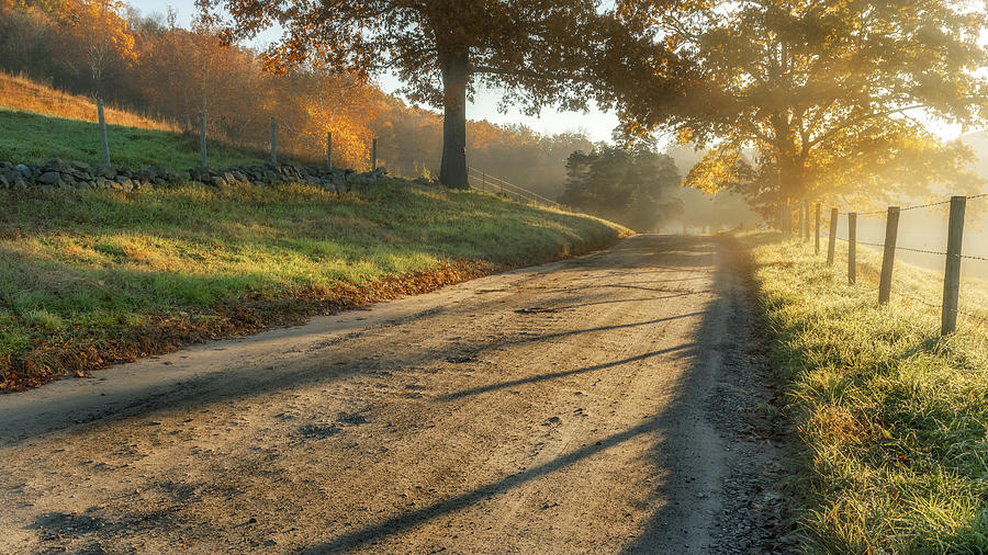 Back Road Morning Photograph  - Back Road Morning Fine Art Print