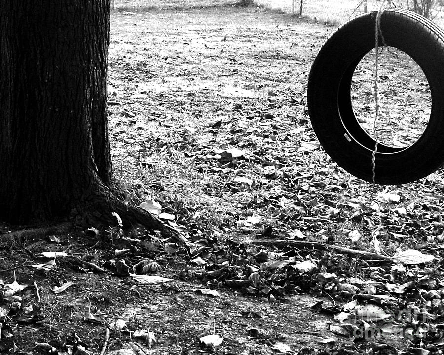 Backyard Playground-tree With Tire Photograph  - Backyard Playground-tree With Tire Fine Art Print