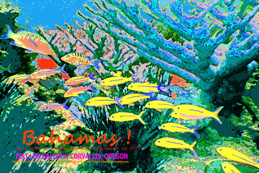 Bahamas coral reef is a piece of digital artwork by mike moore fiat