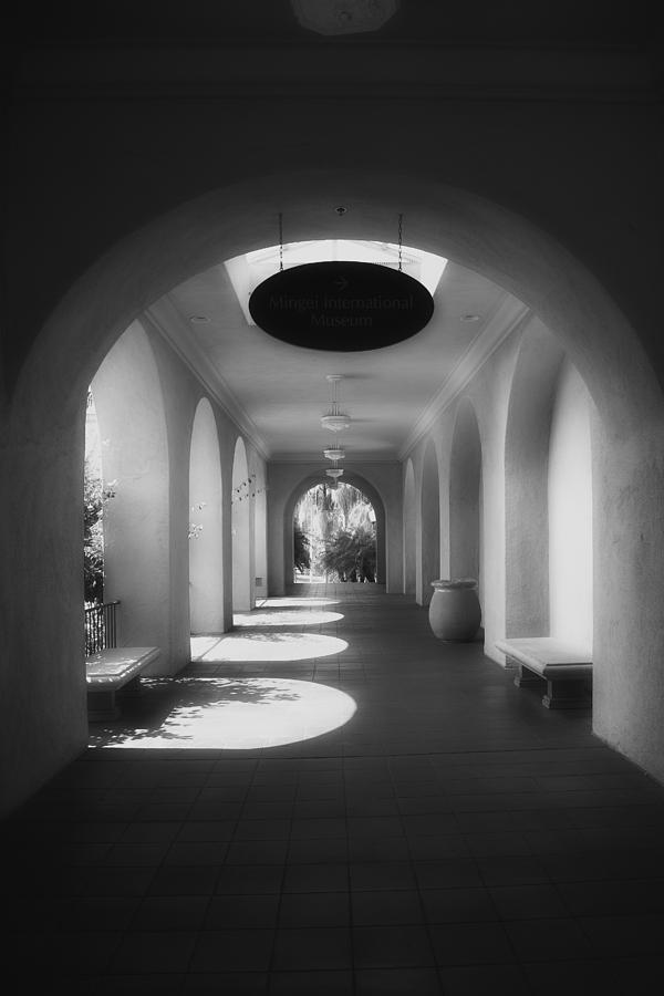 Balboa Park Elements Photograph  - Balboa Park Elements Fine Art Print