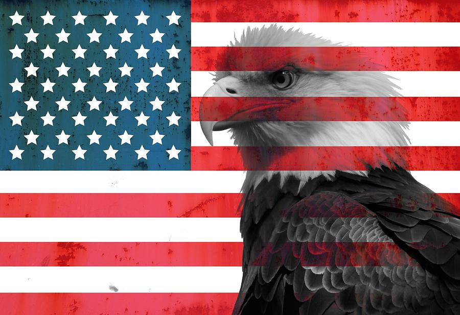 Bald Eagle American Flag Mixed Media - Bald Eagle American Flag by Dan ...